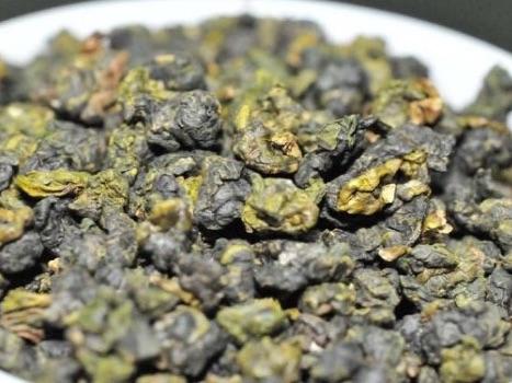 凍頂烏龍茶(業務用)
